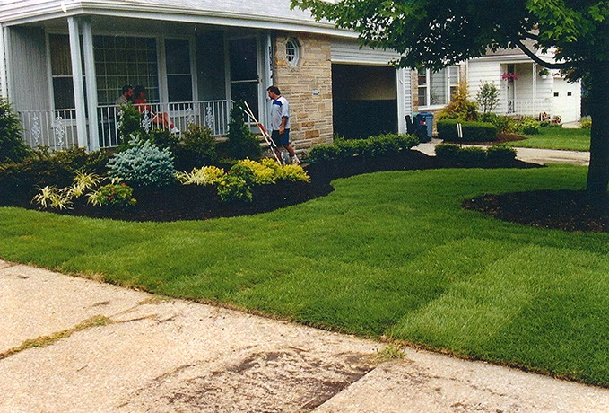 Landscape Yard Makeover: 2 Day Installation